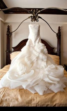 Vera Organza Fit And Flare Gown With Bias Skirt