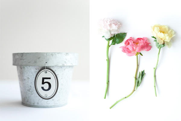 DIY Wedding Peony Centerpieces