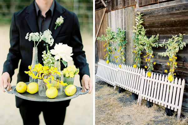 lemon-wedding-ideas5