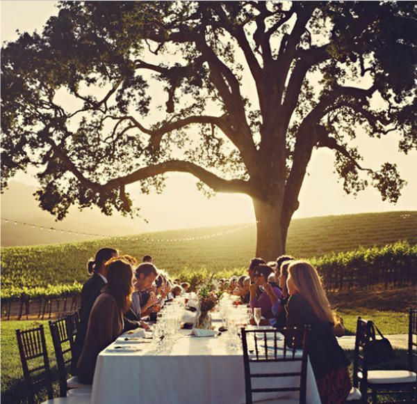 vineyard-wedding-ideas