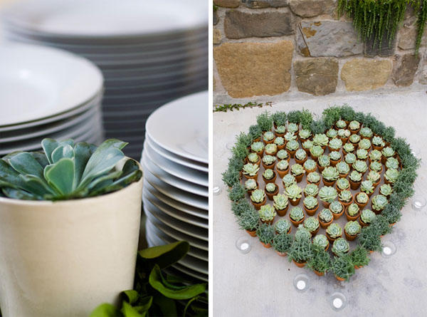 succulent-wedding-favors