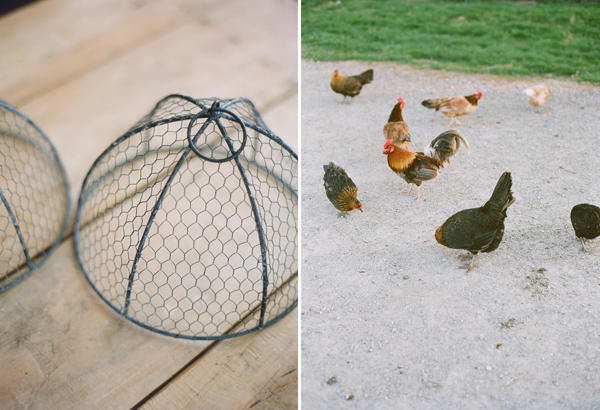 chicken on farm wedding