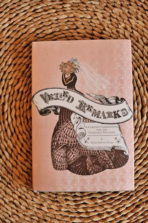 veiled remarks book