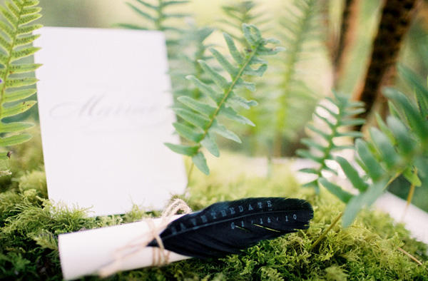 Feather Wedding Save The Date
