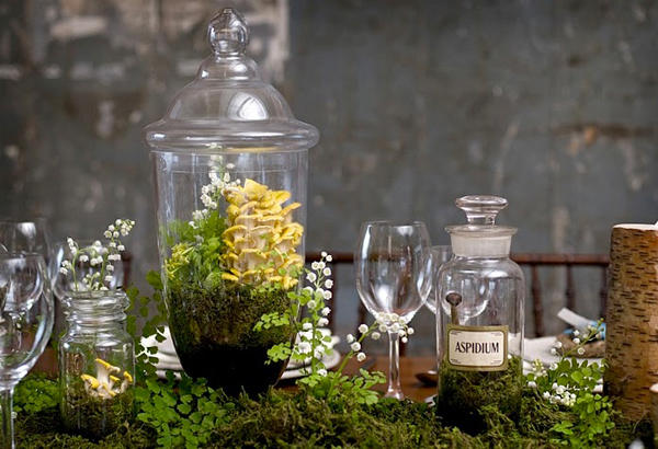 Terranium Wedding Centerpieces
