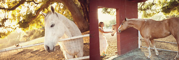 ranch-wedding-ideas-1