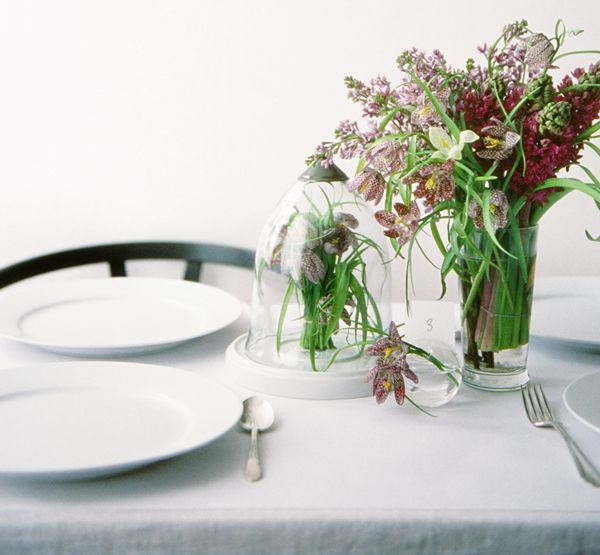 Bulbs Tablescape 1