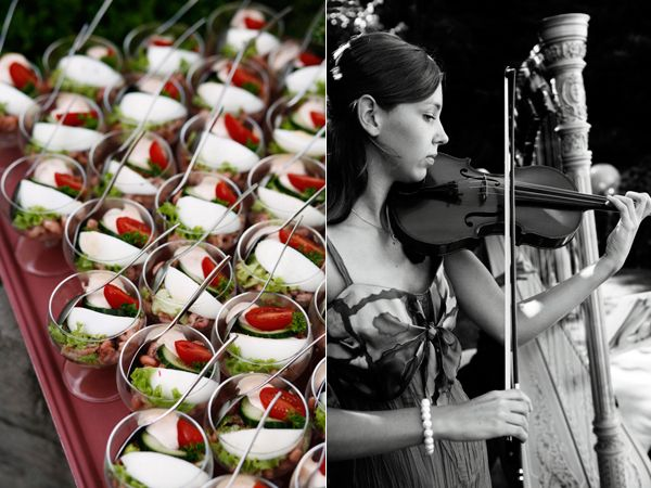Appetizers Violinist