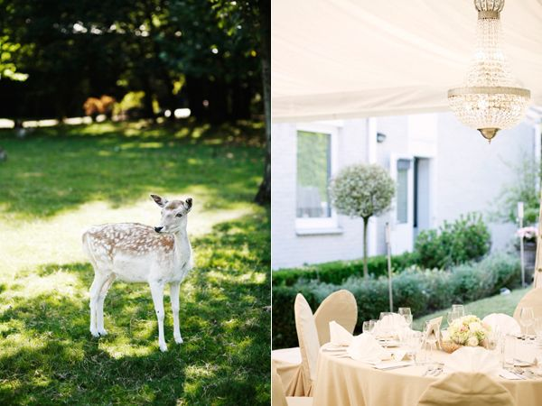 Baby Deer Reception Dinner Tent