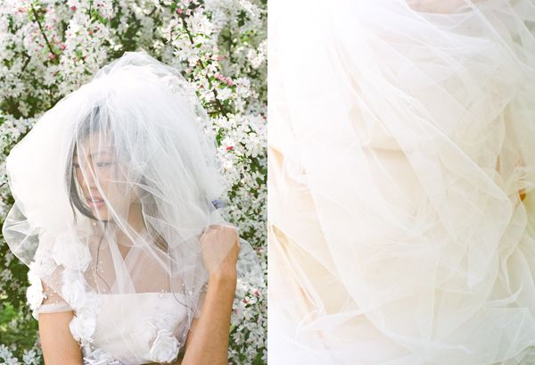Pink Peach Tulle Poofy Veil