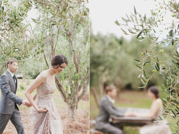 Bride Groom Olive Grove