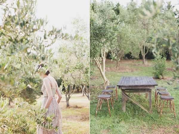 Bride Olive Grove Rustic Farm Table