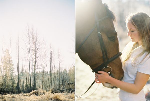 Horse Engagement Ideas
