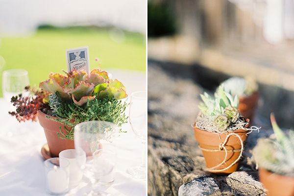 Succulent Wedding Centerpiece Ideas