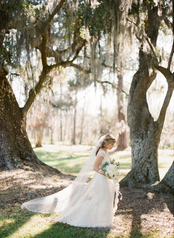 Claire Pettibone Dress Veil Spanish Moss Oaks