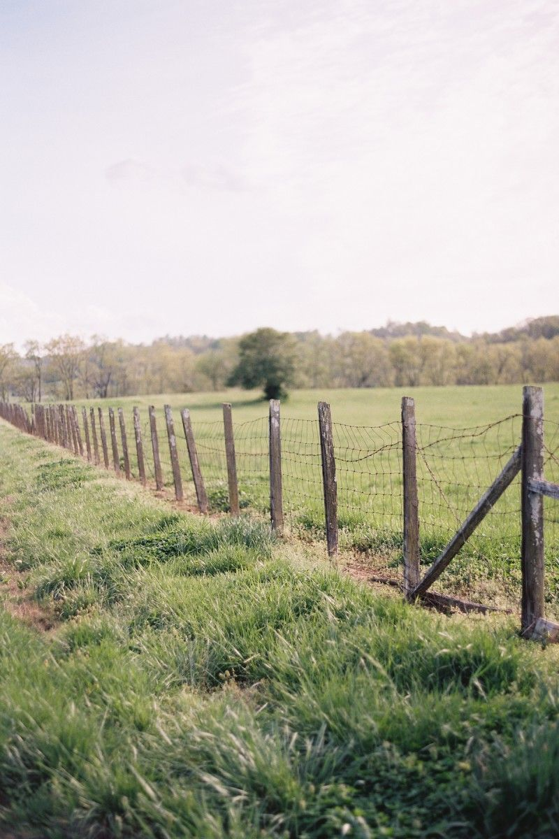 Engagement Photo Tennesee Open Fields Wire Fence