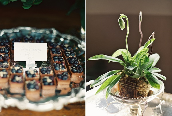 Once Wed Launch Party Blueberry Tarts Potted Plant