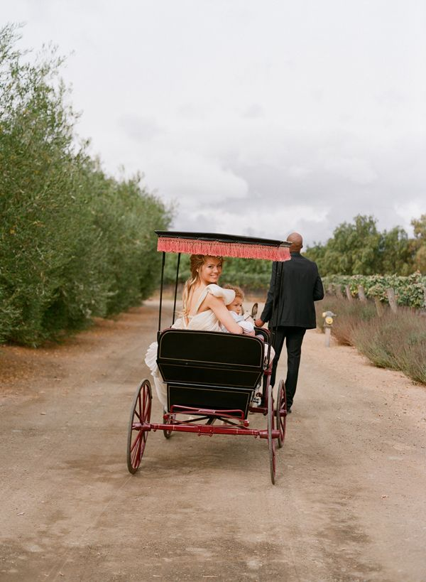 Elopement With A Carefree Spirit Carriage Ride Vineyard Wedding