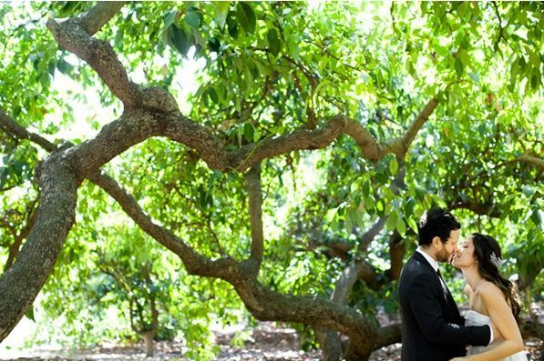 rustic-Ojai-garden-wedding-bride-groom-green-garden-kiss