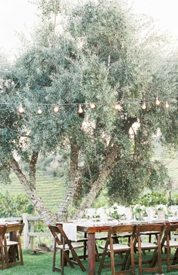 string lights wedding reception