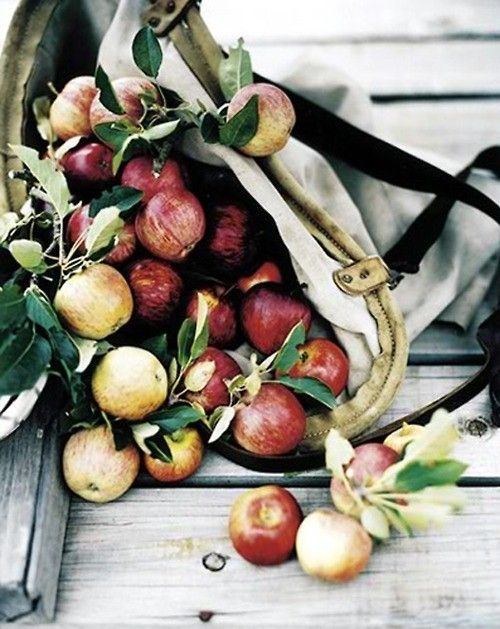 bag of apples fall wedding