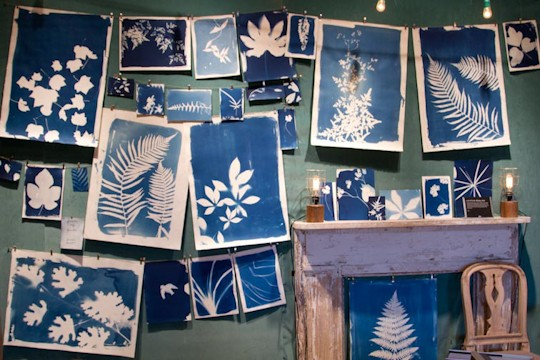 blue white drawings