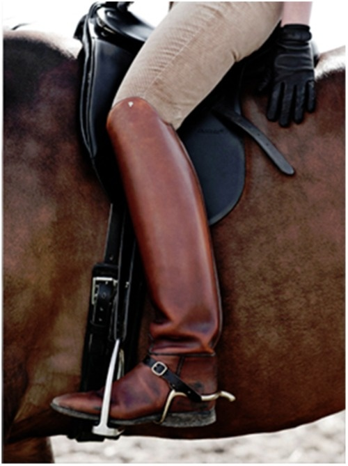 brown riding boots horse