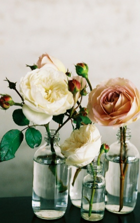 centerpieces for wedding single blooms