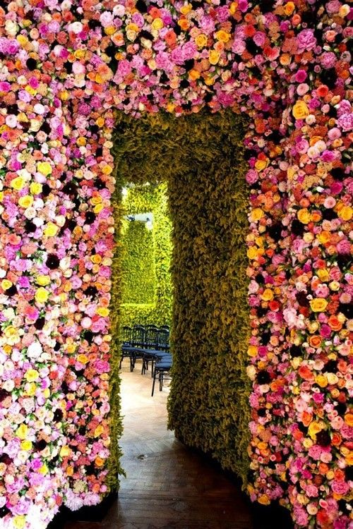 flower doorway tropical
