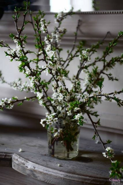 flowering branch centerpiece