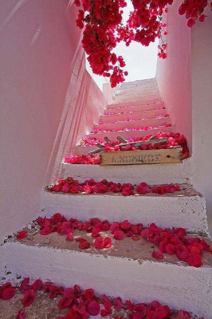flowering red steps
