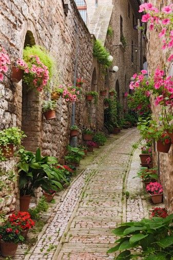 flowering walkway village