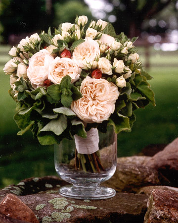 Full Garden Rose Bouquet Thick Green Leaves