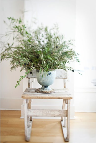 green branch potted plant wedding centerpiece