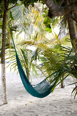 hammock wedding location