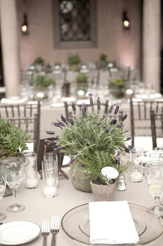 Lavendar potted plant centerpiece once wed
