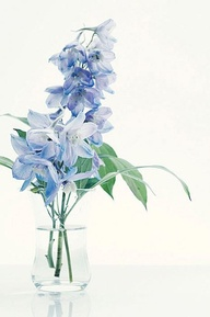 light blue flower centerpiece