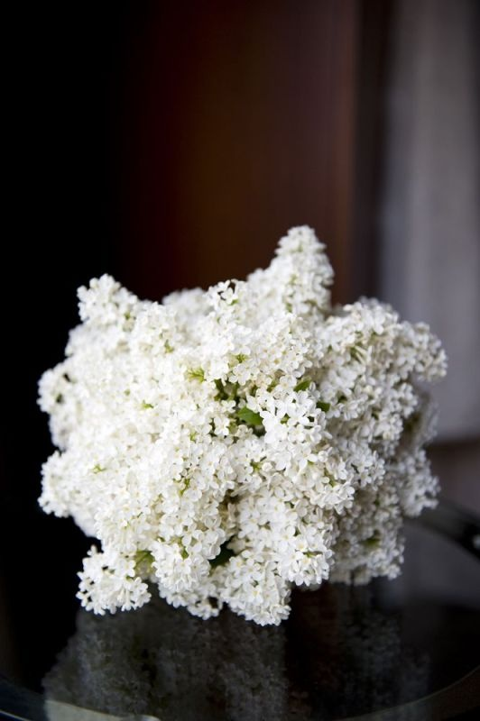 Lilacs White Spring Bouquet