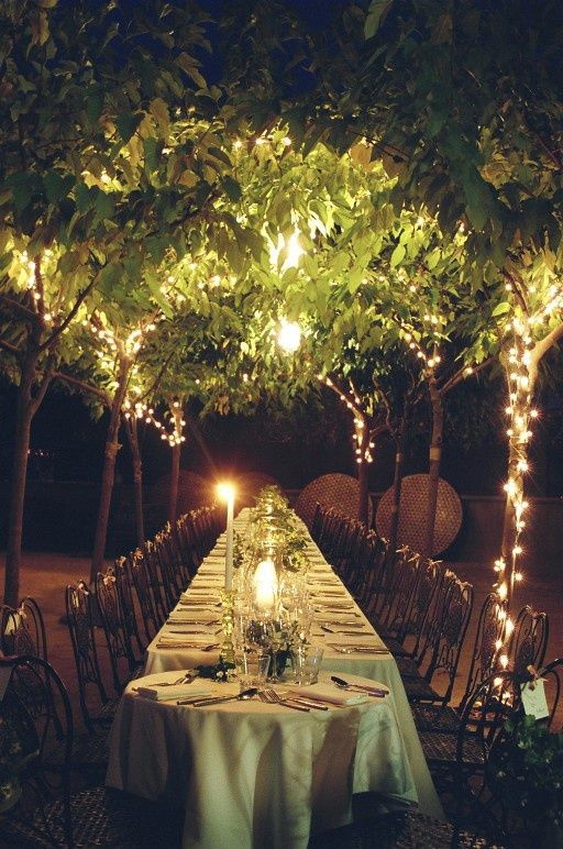 Outdoor Canopy Tree Wedding Reception Once Wed