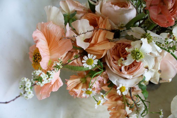 peach white daisy amy merrick