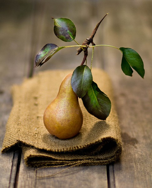 pear wedding favor natural ideas