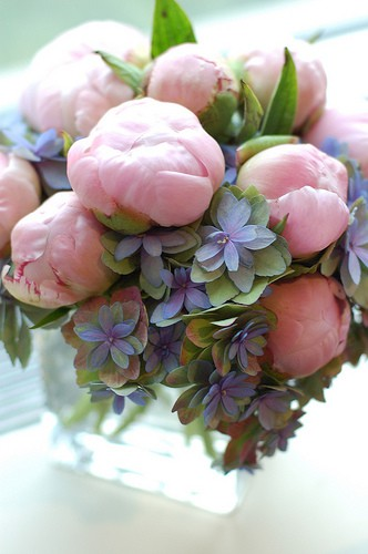 Peonies And Hydrangea Pink Purple Green Once Wed