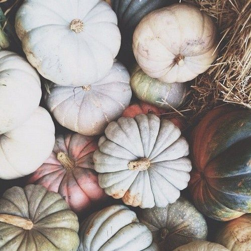 pumpkins fall wedding decor