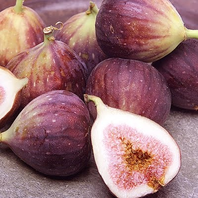 purple figs summer