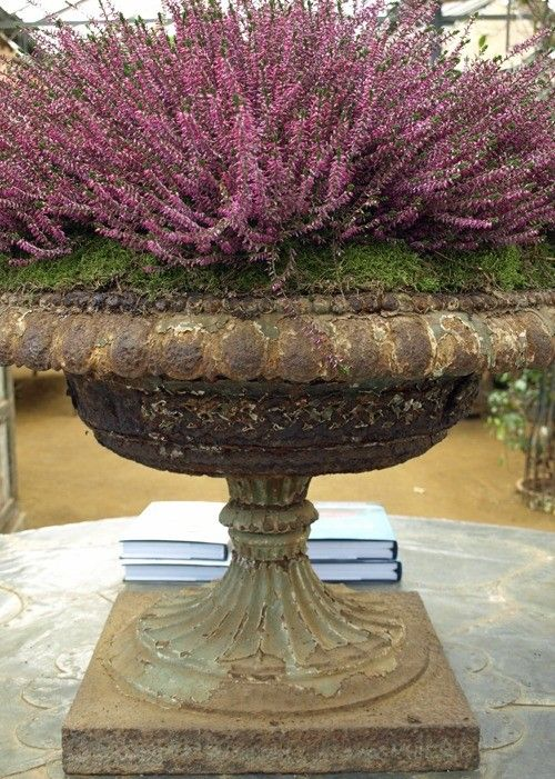 purple flower stone urn