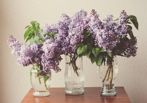 purple wedding reception centerpieces
