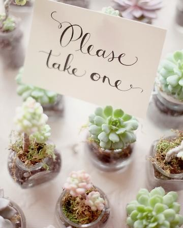 real weddings succulent favors