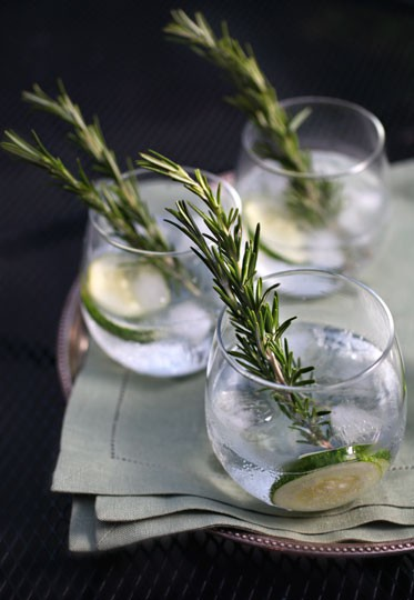 cucumber rosemary gin tonic