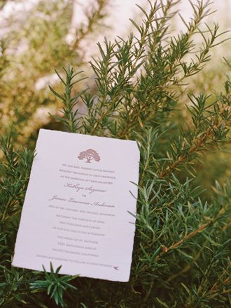 rustic tree invitation