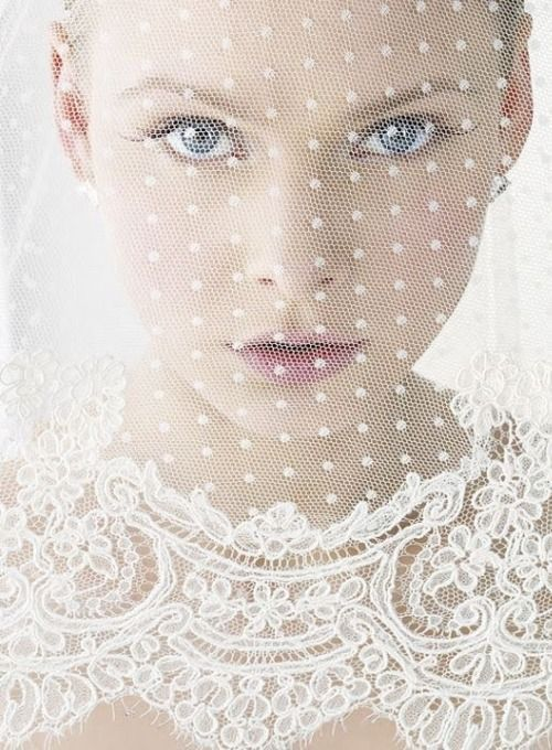 short polka dot veil